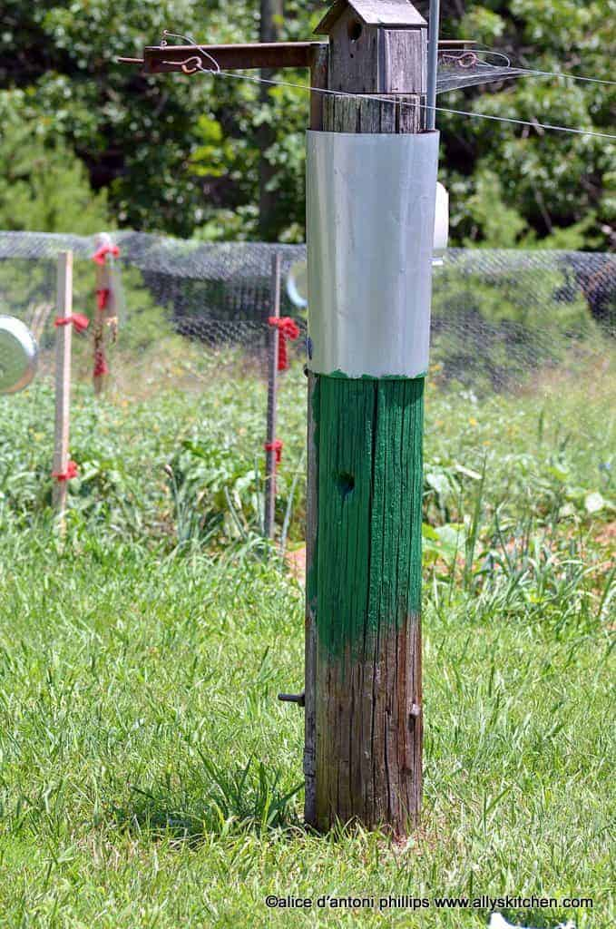 Clothesline post with birdhouse at top