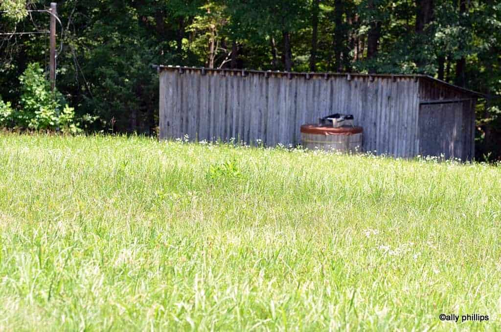 Wooden shed in a field