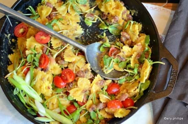 farfalle bean breakfast pasta