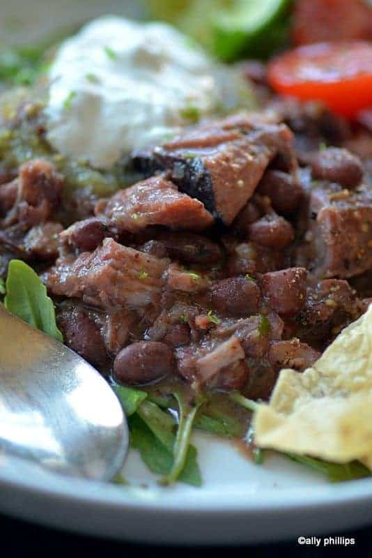 salsa verde latin red beans & pork