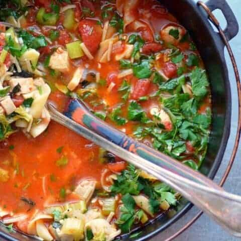 chicken doodle soup