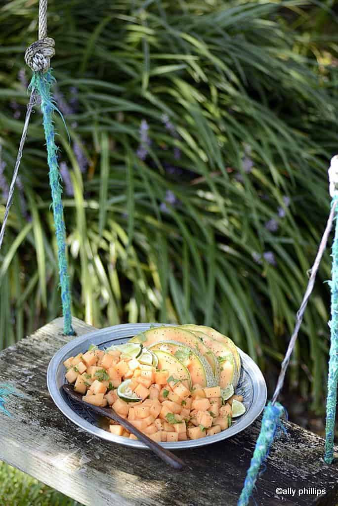 lime cilantro cantaloupe