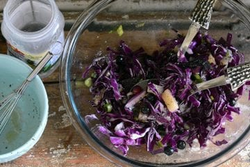 crunchy pineapple blueberry slaw